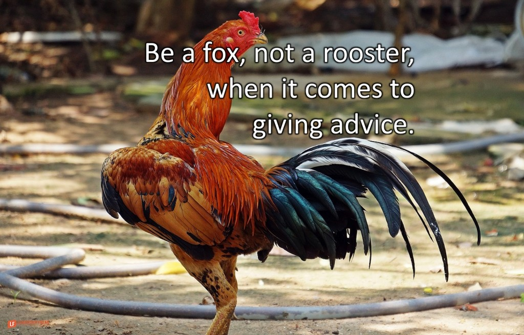 Rooster  Be a fox, not a rooster, when it comes to giving advice.
