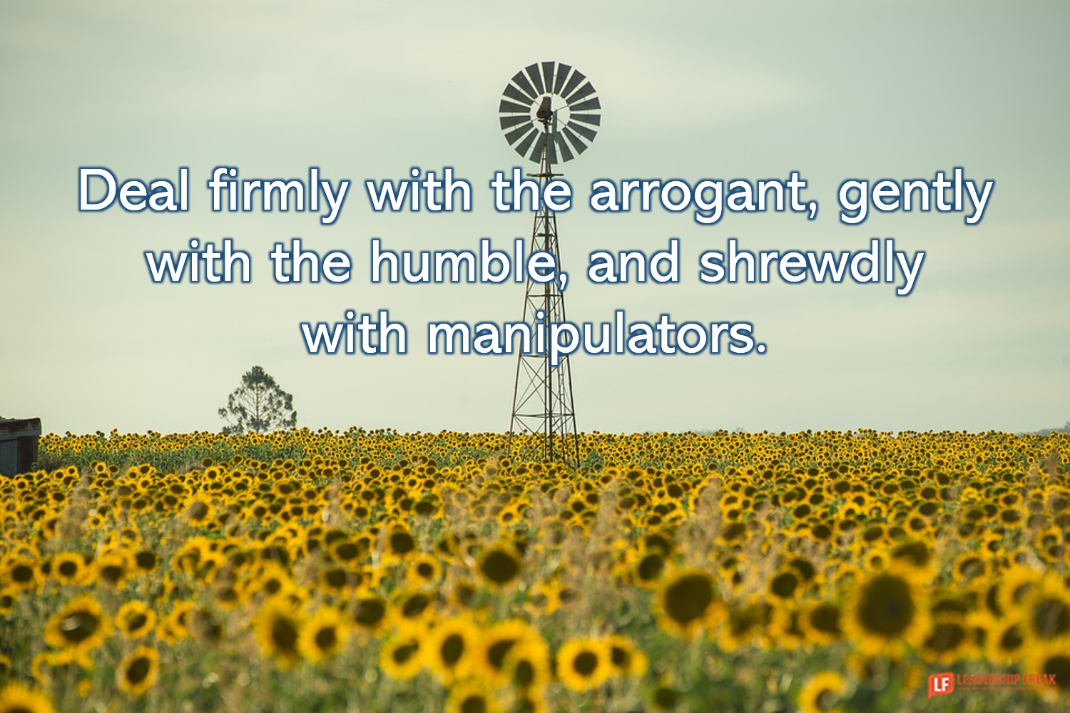 Sunflowers and windmill  Deal firmly with the arrogant, gently with the humble, and shrewdly with manipulators.