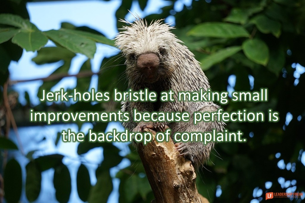 Porcupine  Jerk-holes bristle at making small improvements because perfection is the backdrop of complaint.