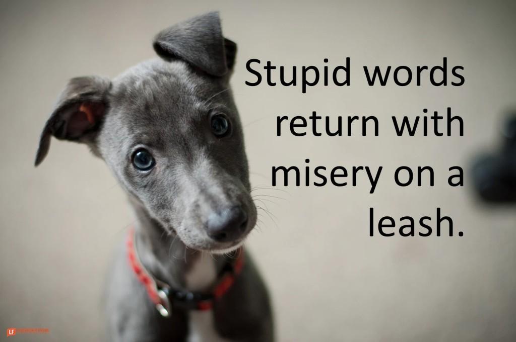 Dog  Stupid words return with misery on a leash.