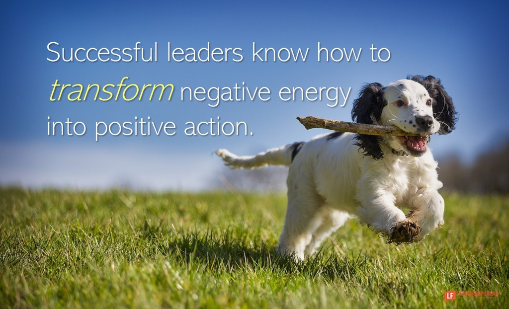 Dog with a stick.  Successful leaders know how to transform negative energy into positive action.