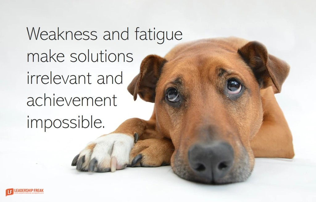 Tired dog.  Weakness and fatigue make solutions irrelevant and achievement impossible.