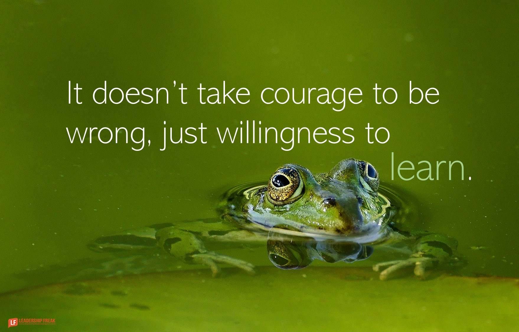 Frog  It doesn't take courage to be wrong, just willingness to learn.