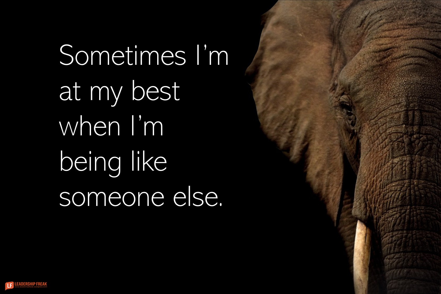 Elephant  Sometimes I'm at my best when I'm being like someone else.