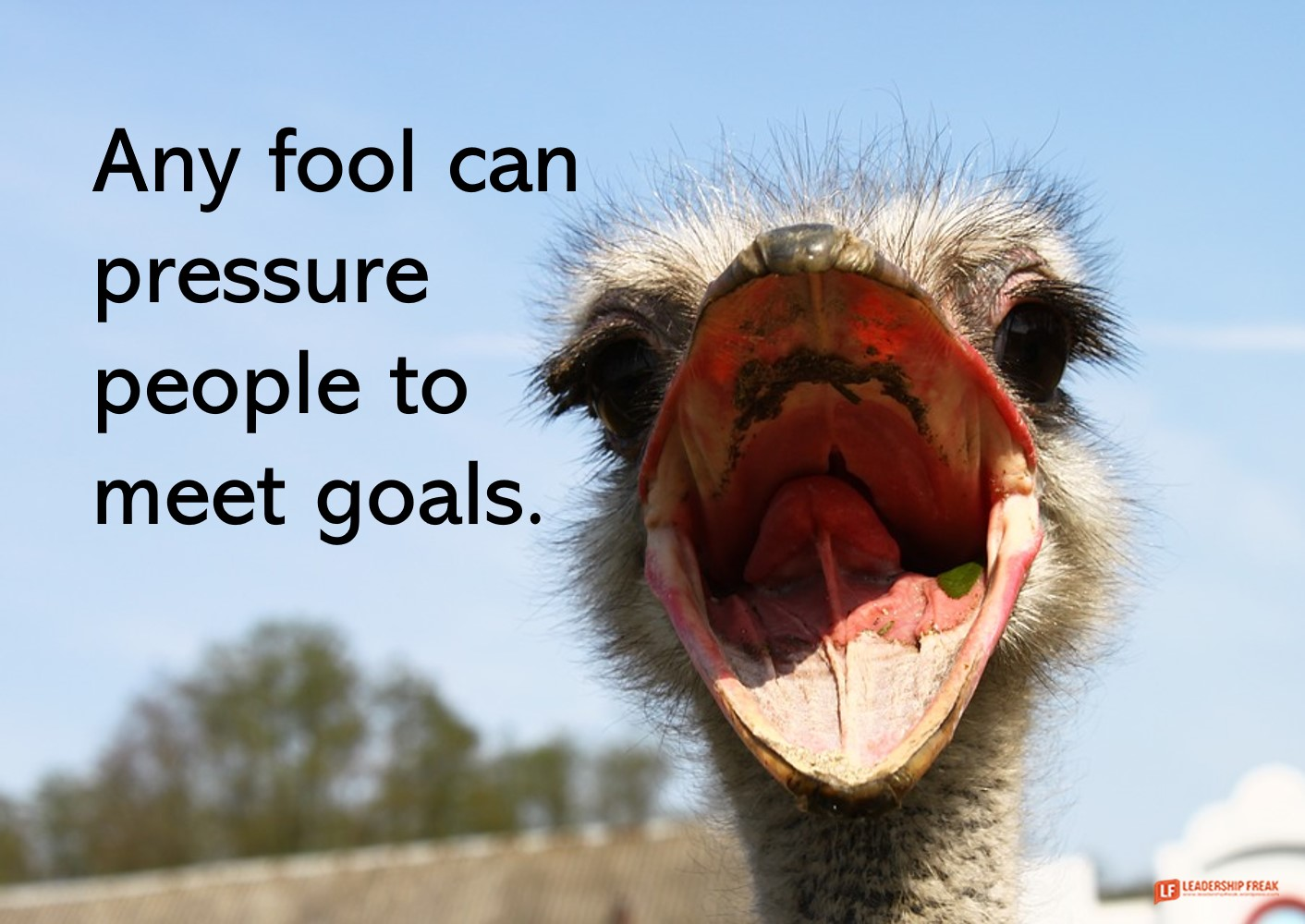 Ostrich mouth  Any fool can pressure people to meet goals.