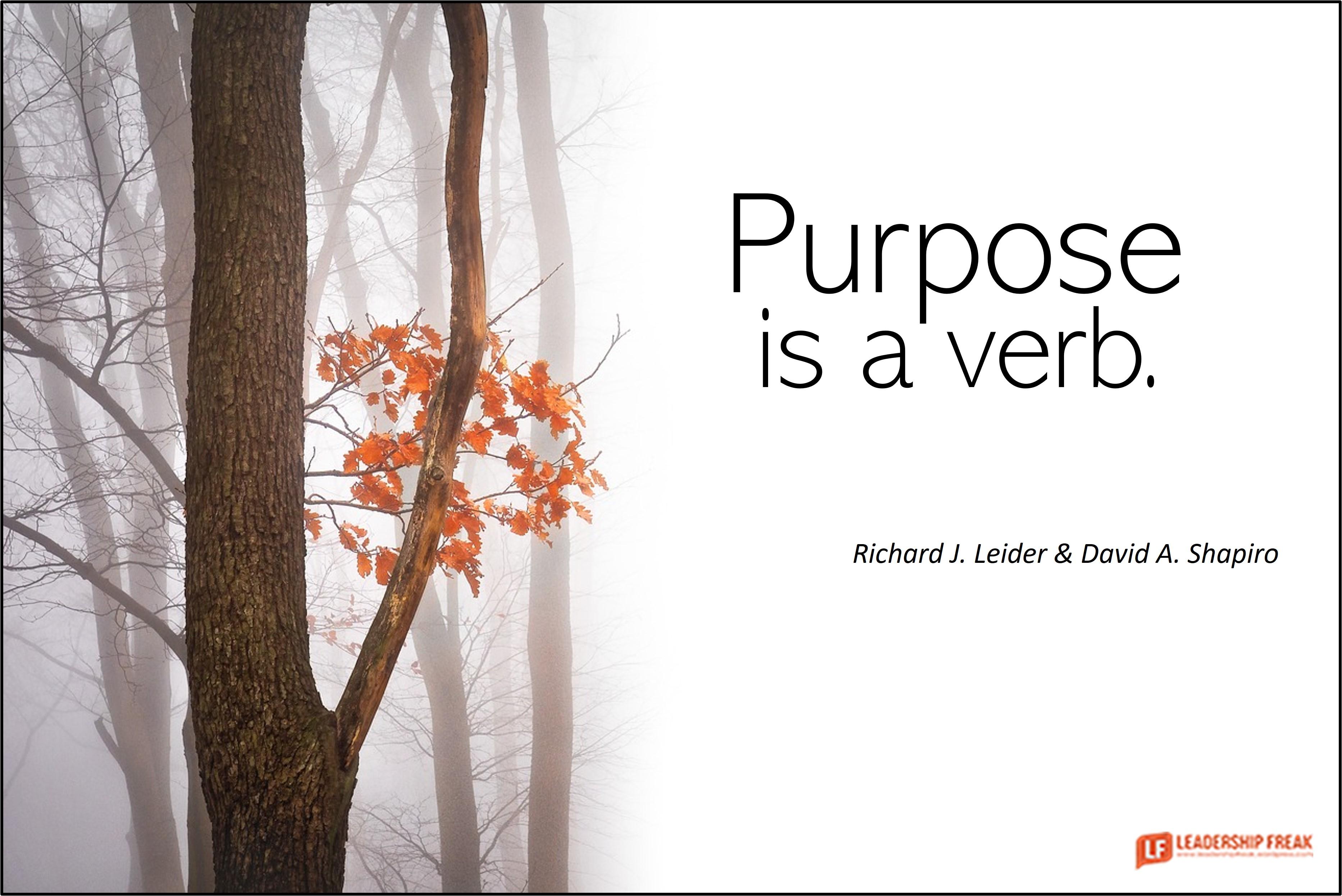 Fall scene.  Purpose is a verb.