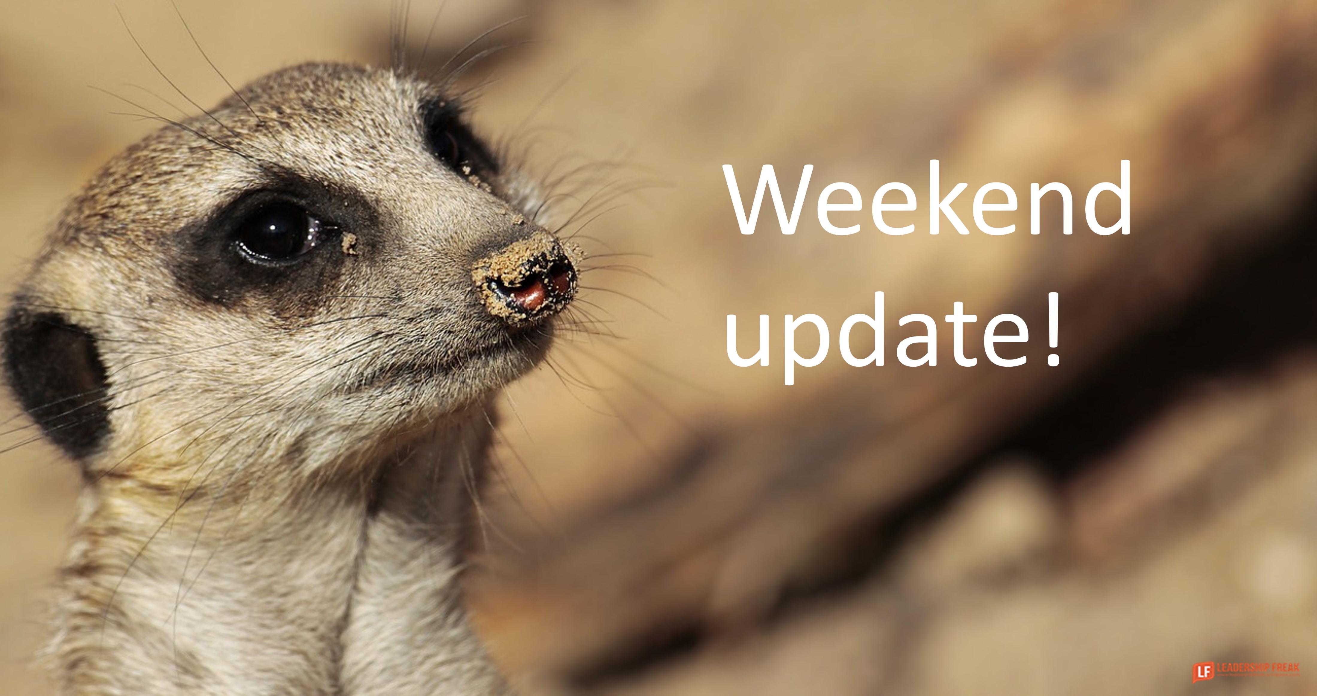 Meerkat  Weekend update