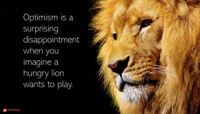 Image of a lion