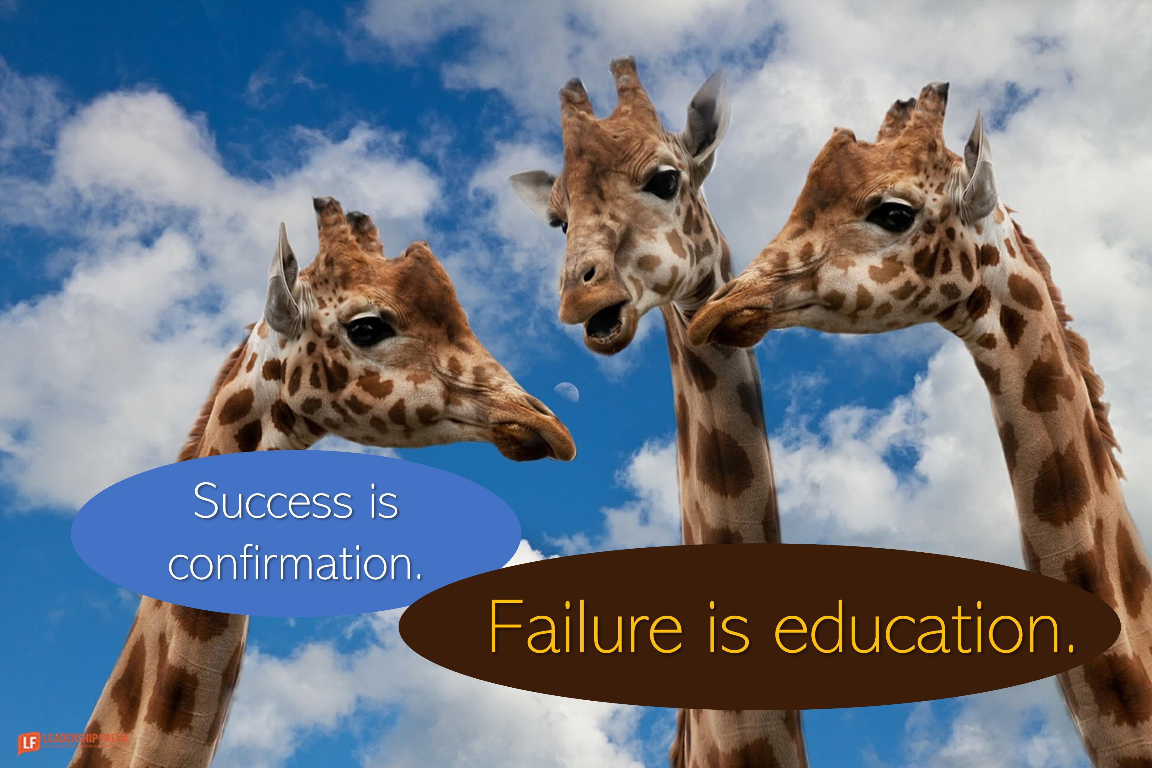 Giraffes  Success is confirmation. Failure is education.