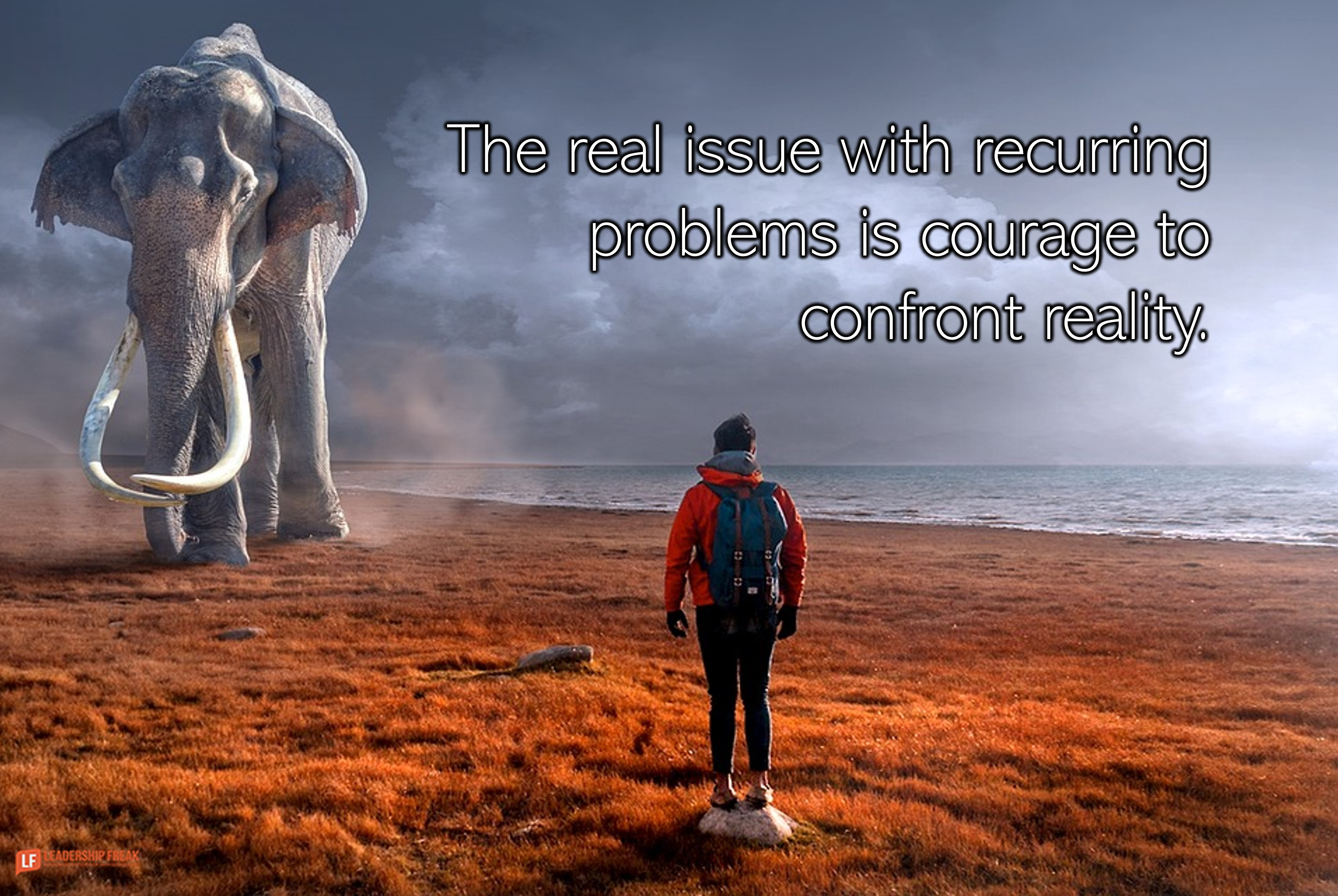 Man facing an elephant.  The real issue with recurring problems is courage to confront reality.