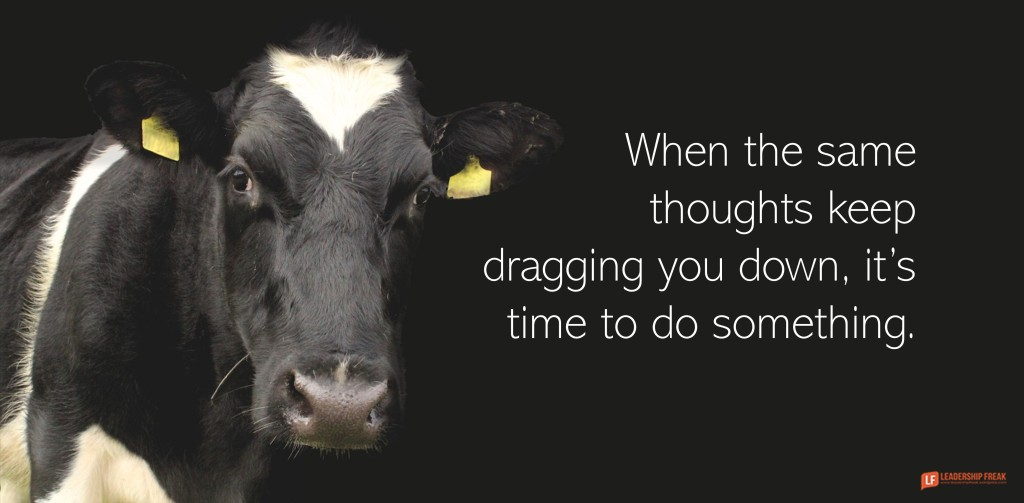 Image of dairy cow looking at you.  When the same thoughts keep dragging you down, it's time to do something.