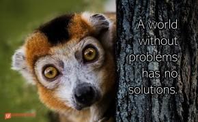 Image of a wide eyed animal peeking around a tree.
