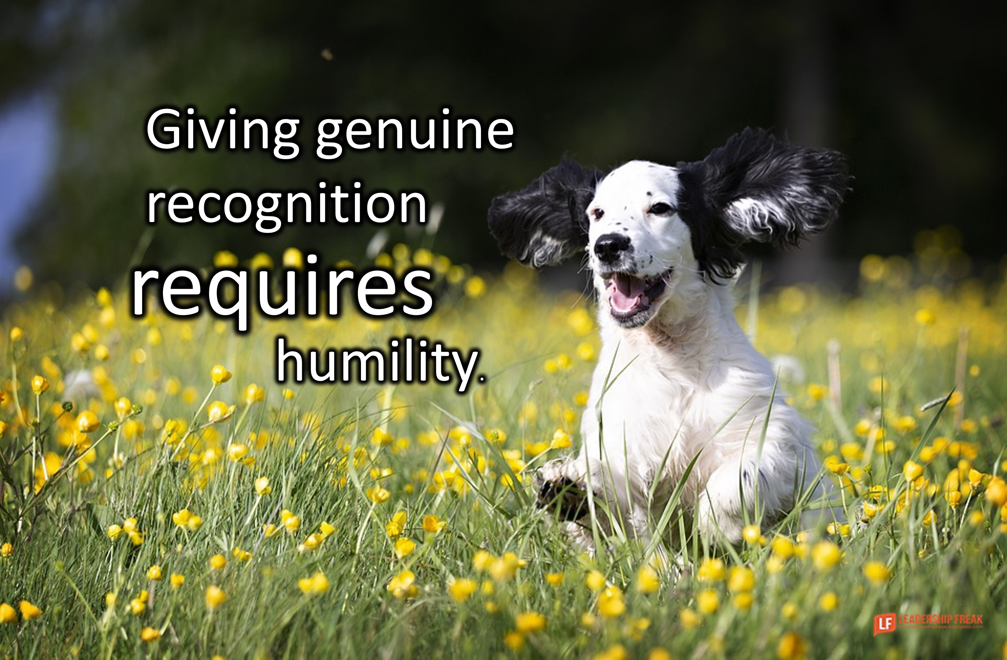 Happy dog.  Giving genuine recognition requires humility.