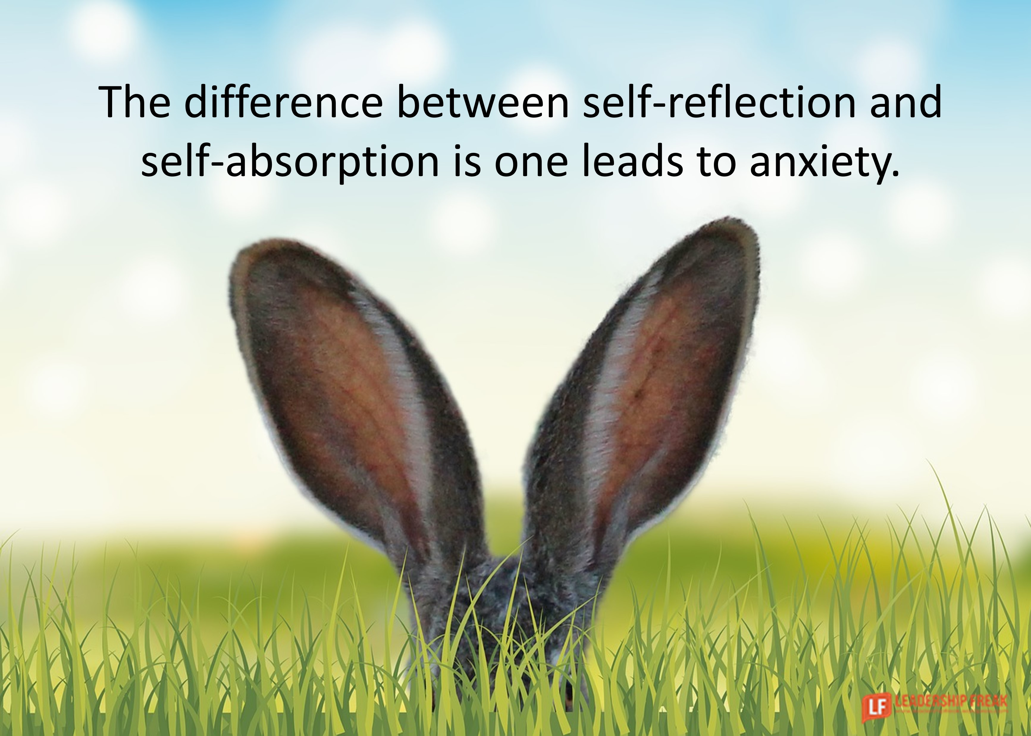 Bunny ears sticking out of the grass.  The difference between self-reflection and self-absorption is one leads to anxiety.